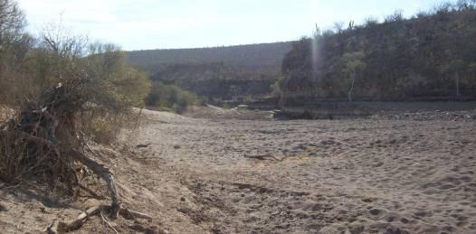 Destinarán casi 10 mdp para ordenamiento territorial de los principales cauces de arroyos