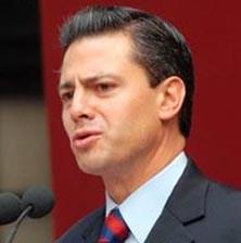 Solicita Peña Nieto formato de registro para la Presidencia