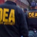 Los agentes espían, recopilan información y dan seguimiento a los temas y casos de su interés, informaron las fuentes anónimas.