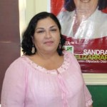 La diputada Sandra Elizarrarás Cardoso solicitará la intervención de la Secretaría de Educación Pública para evitar este tipo de propaganda ya que se contradice con el trabajo que realizan todos los días los docentes y los padres de familia.