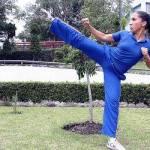 Después de que Carmen de la Fuente Pérez estuviera permanentemente como representante del wushu en diversas justas internacionales, entre las que se encuentran los mundiales de China y Vietnam, además de los torneos panamericanos, otros deportistas se sumaron a los equipos de México para competir a nivel continental.