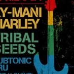 Bandas locales reconocidas como KL, David Rait & More y Rise N Shine abrirán escenario al número principal de la noche: Ky Mani Marley.