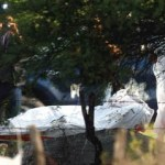 La PGR vincula el caso con las matanzas recientes entre los cárteles de Sinaloa y Los Zetas en Jalisco y Tamaulipas.