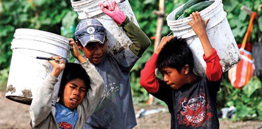Es indispensable que los más de catorce mil jornaleros agrícolas que trabajan en el estado reciban apoyo psicológico, para que no teman denunciar incumplimientos en sus contratos laborales o maltratos de parte de sus mayordomos.