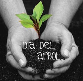 Hoy es el Día Mundial del Árbol