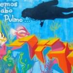 Cabo Pulmo aún está en riesgo, así lo deja ver el Centro Mexicano de Derecho Ambiental (CEMDA) al indicar que aún es necesario anular otras autorizaciones en la zona y que todavía es posible solicitar la creación de desarrollos parecidos a Cabo Cortés en este parque natural.