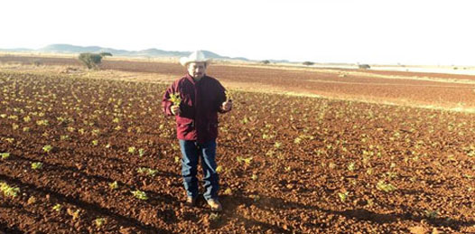 Concluye Operativo Emergente de Atención a la Sequía