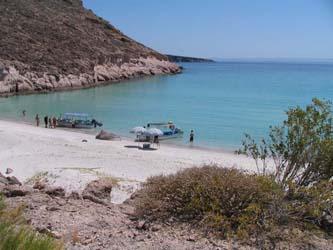Realizan investigadores de la UABCS diagnóstico ambiental de la isla Espíritu Santo