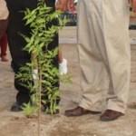 El evento se dio en el marco inaugural del arranque oficial de la temporada de reforestación estatal 2012 para los beneficiarios de ProÁrbol.