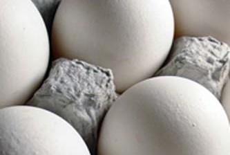 «Millonario» atraco… se roban casi 3 mil huevos en Ahome