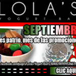 Lola's Yogurt - Banner