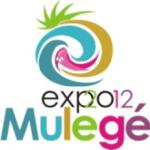 Expo Mulegé, Arte en el Desierto 2012