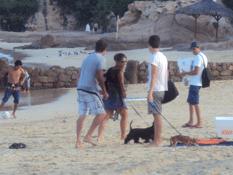 Sanciones a quienes ensucien las playas