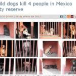 perros asesinos
