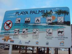 Buscan certificar a La Empacadora como playa limpia