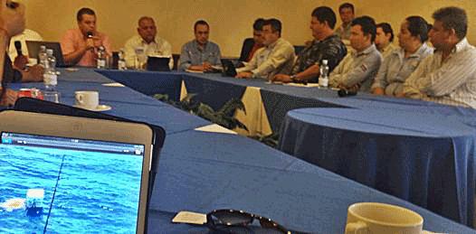 Algas nocivas, las causantes de la mortandad de Caguama Amarilla concluye CONAPESCA