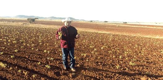 """Está seco, pero """"todavía no hay sequía"""" explica el Secretario de Desarrollo"""