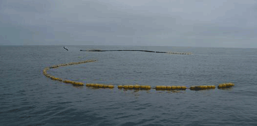 En riesgo la bahía de Ulloa: naufraga nave con 10 mil litros de diesel