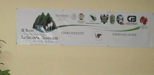 A defender la Giganta y la Guadalupe