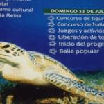 """""""12 Festival de la tortuga y su invitada la sardina"""" de Puerto San Carlos"""
