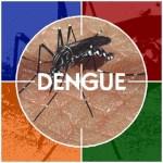 """""""Escuelas sin dengue, niños sin dengue""""."""