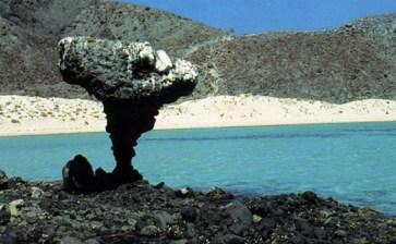 Cumplió Balandra su primer aniversario como Área Natural Protegida