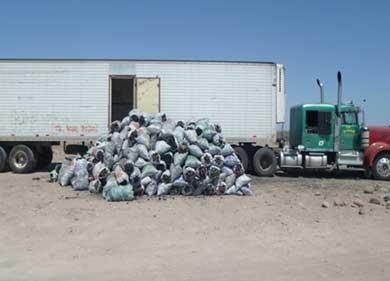 Asegura PROFEPA 8 toneladas de carbón  vegetal