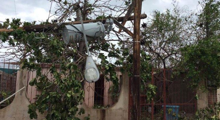 Más de mil viviendas afectadas por Odile