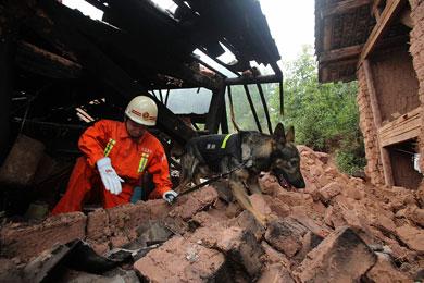 Sacude sismo a China