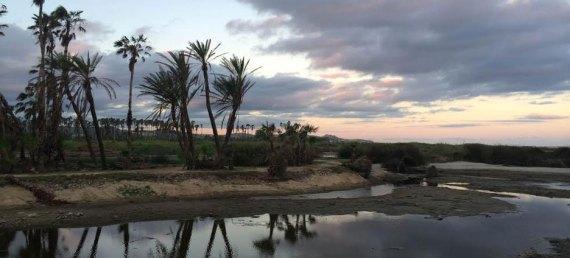 Estero San José