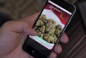 Marihuana a domicilio