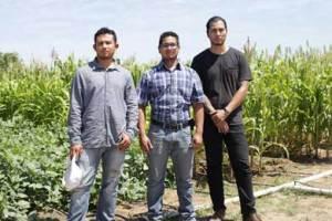Campo Agrícola de la UABCS