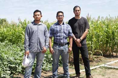 Apuestan por producciones agrícolas orgánicas en la UABCS
