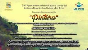 feria de la Pitahaya Miraflores 2016
