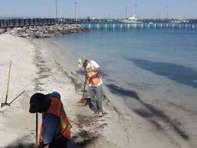 Playas paceñas, limpias y aptas para el turismo