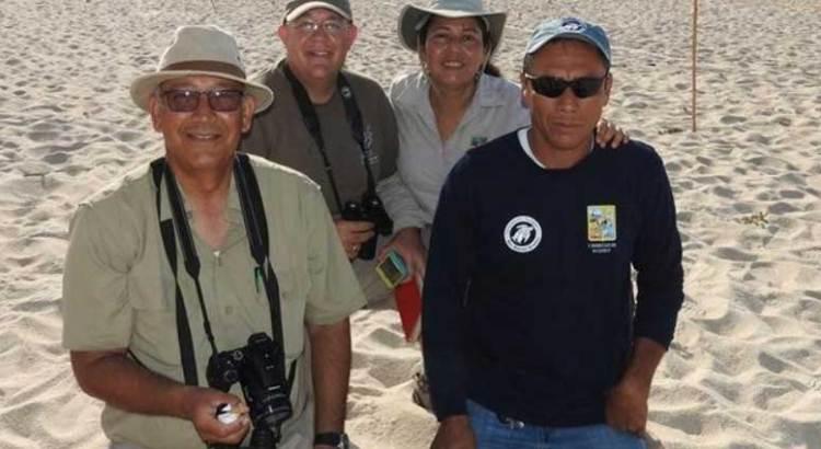 Excepcional temporada de anidación de gallito marino en Los Cabos
