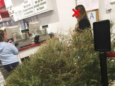 Exigió reembolso por su árbol de navidad