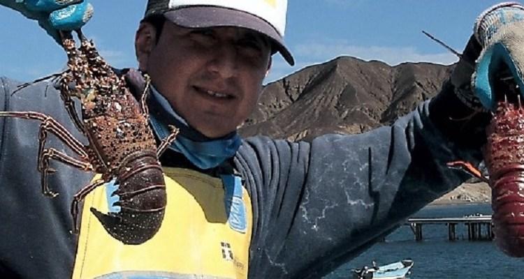 Baja California Sur, principal productor de langosta a nivel nacional
