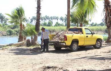 En constante limpieza y reforestación el estero josefino