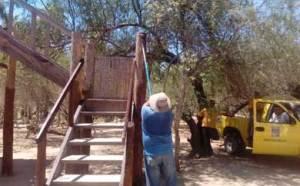 rehabilitación de 2 torres de avistamiento de aves