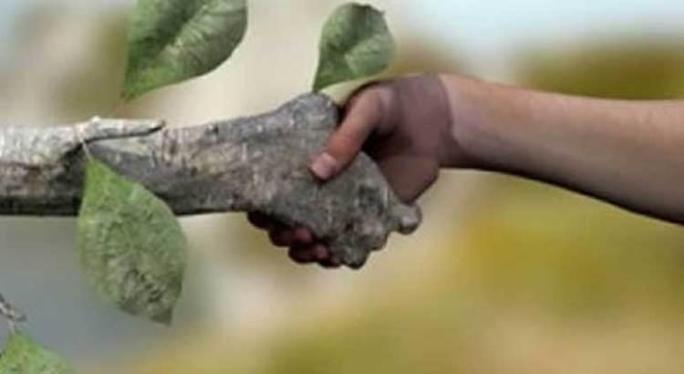 Que se  promueva Ley de Desarrollo Ecológico