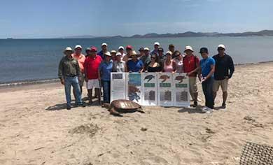 Inician talleres de capacitación para la protección de la tortuga marina