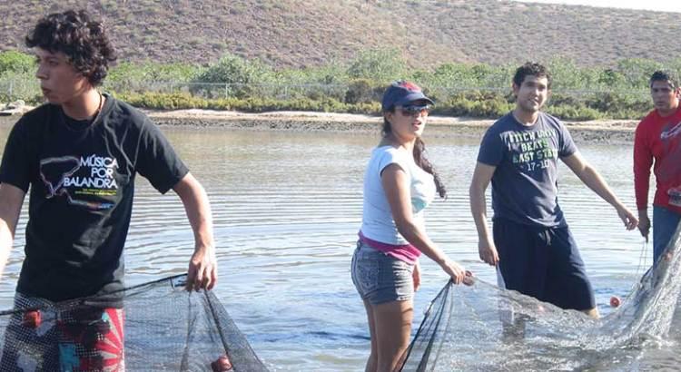Preparan XXXII Semana de Pesquerías