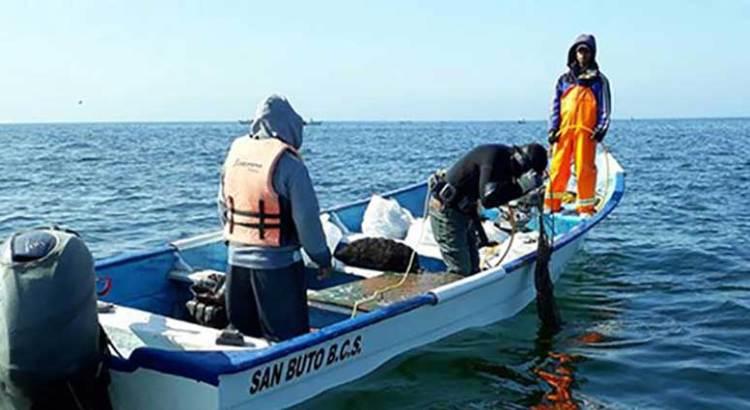 Pescadores furtivos al acecho en la ZPN