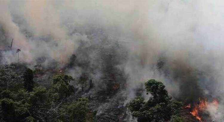 Arde la Amazonia sin control