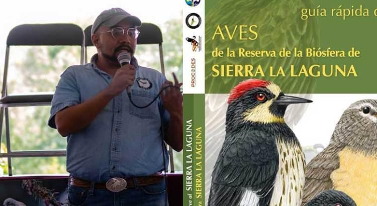 Presentará UABCS primera guía de aves de Sierra la Laguna