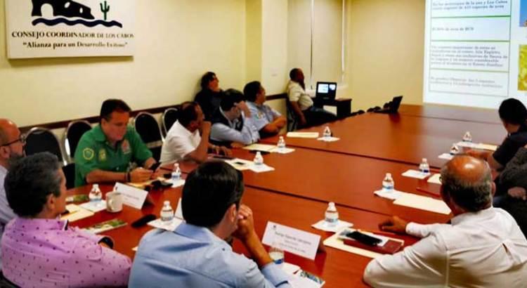 Promueve UABCS el aviturismo en Los Cabos