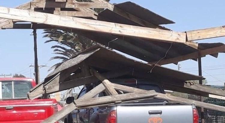 Golpean fuertes vientos a la zona norte de Mulegé