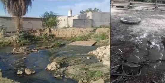 Entre aguas negras viven en Santa Rosa