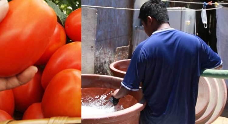 Si quieres agua, vota MORENA, si quieres tomates, vota PAN